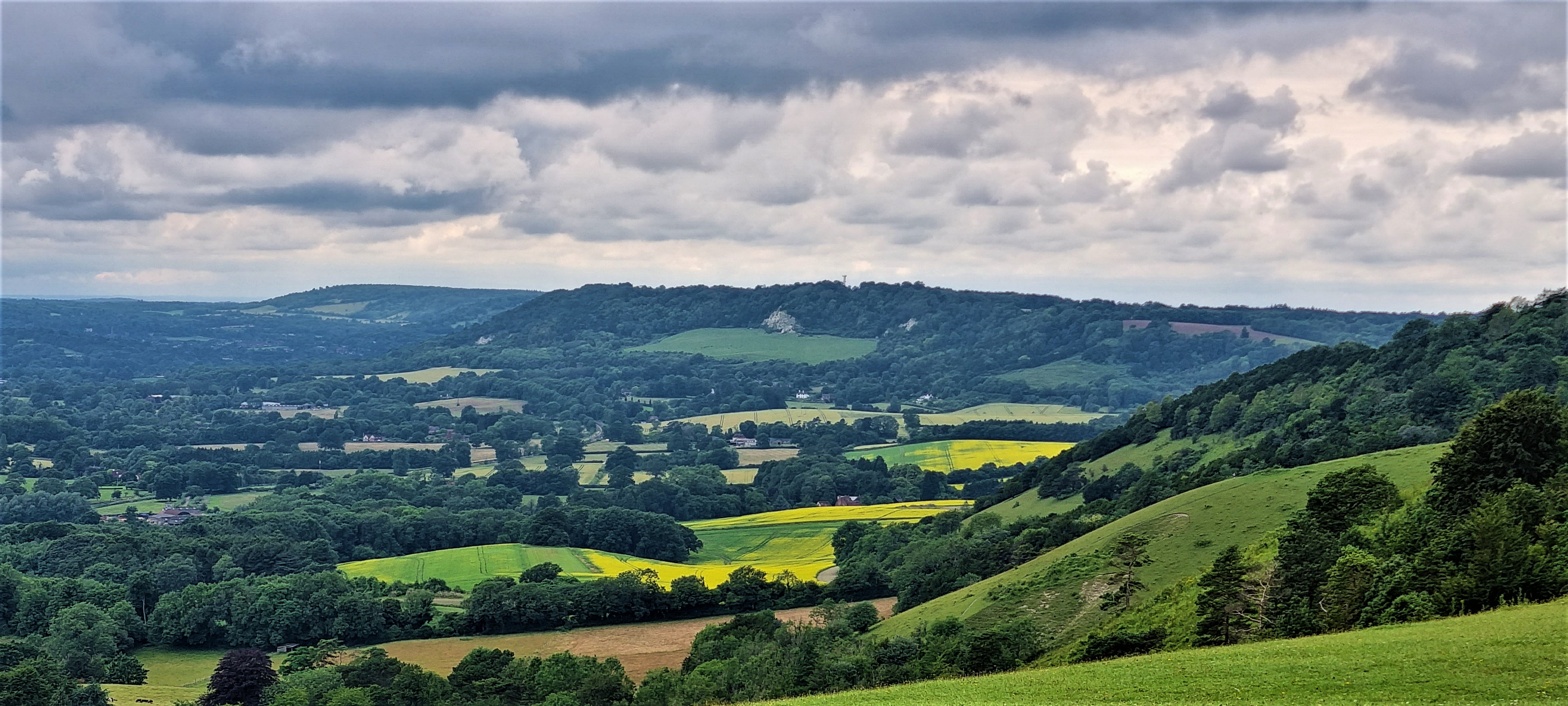 North Downs Way: Westhumble to Merstham
